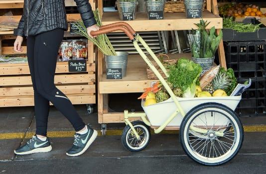 KKDU Plam Bike